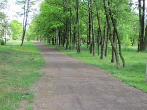 utwardzone ścieżki i alejki